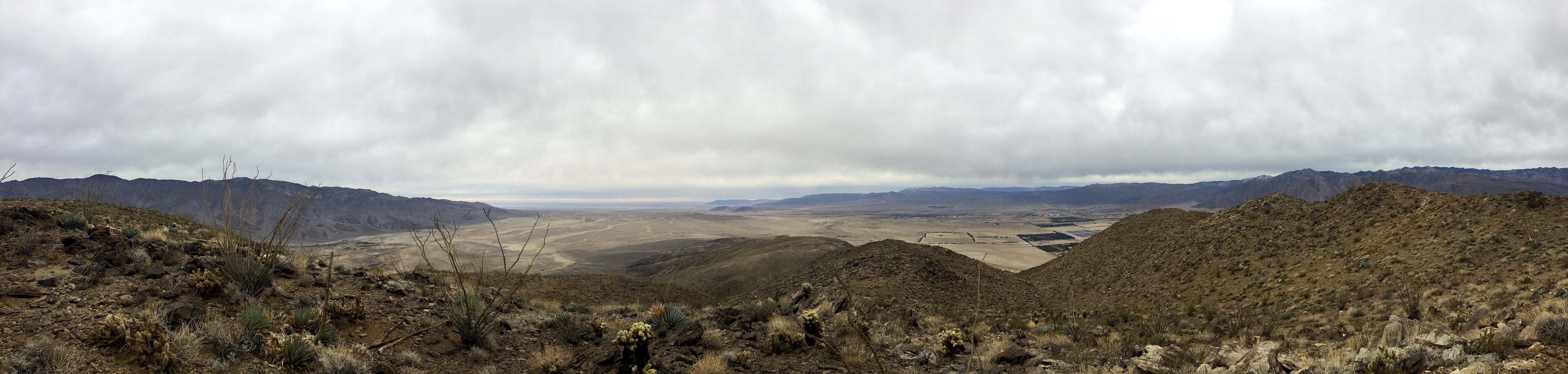 Coyote Summit